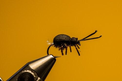 Sven Ostermann Beetle FdM-1728