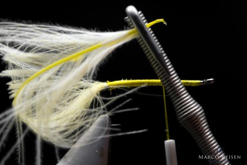 Marco Reisen Yellow Sally Bindeanleitung (4)