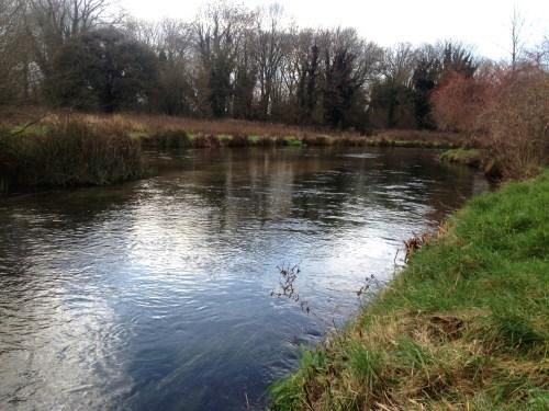 Fliegenfischen_River_Test_Herbst_Aesche6
