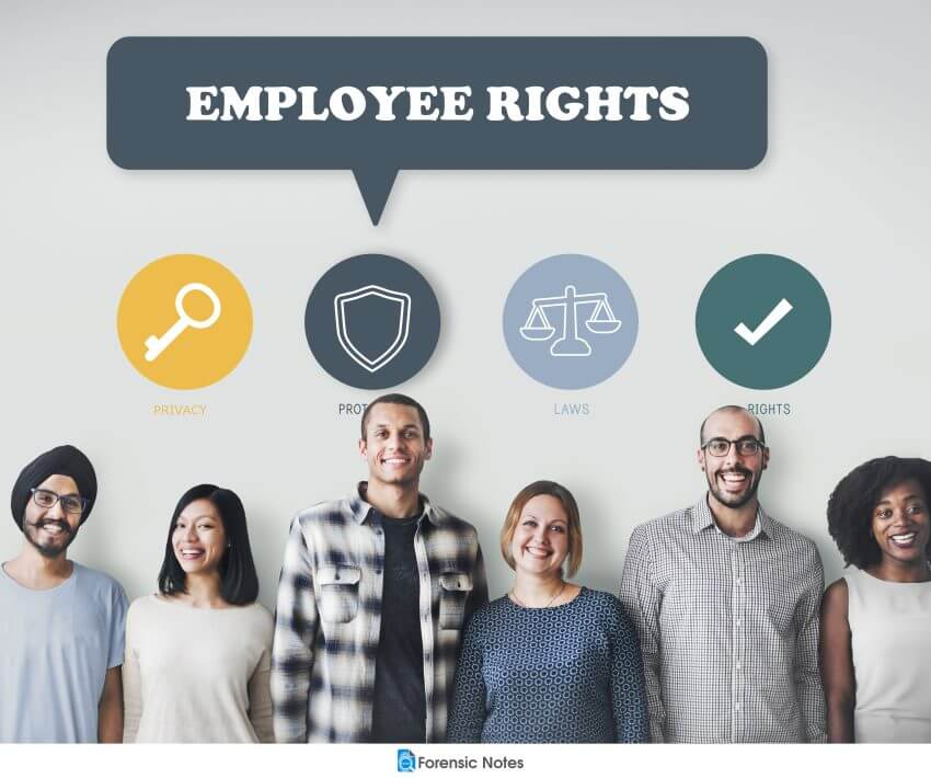 Employment Protection Rights