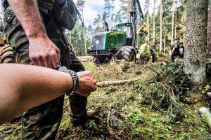 Straś Leśna pacyfikuje lasy państwowe. I Lasy Państwowe.