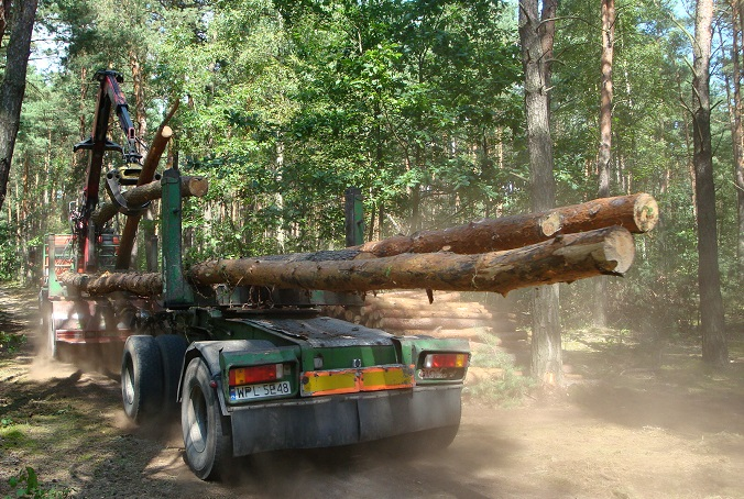 forest harvesting intensity