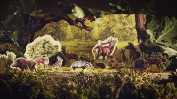 Jaka forma Lasów Państwowych byłaby lepsza?