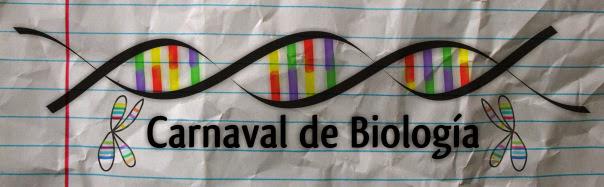 Participaciones en el XX Biocarnaval