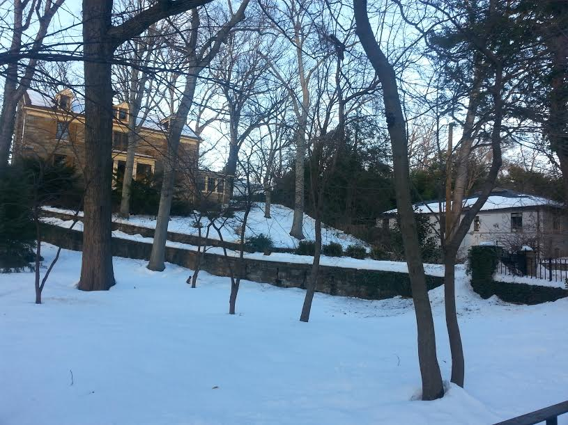 Another view of the property's sloping lawn and driveway. (photo by Marjorie Share)