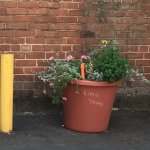 """Adopted"" planters brighten alley behind Bread Furst"