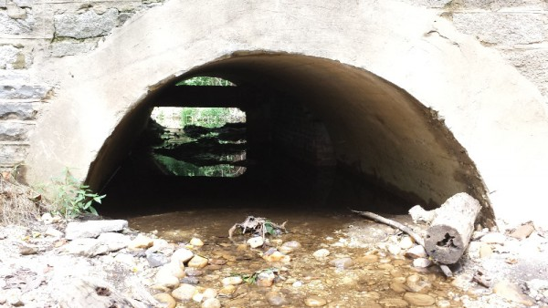 The Broad Branch now flows under 36th Street. The stream once flowed through a pipe here, and the area under the bridge had been bricked up.
