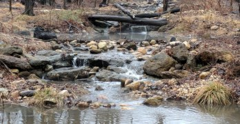 Photos: Rain relieves the drought and fills Broad Branch Stream