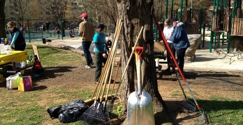 Help identify Forest Hills Park cleanup needs at July 25 community meeting