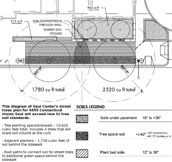 Saul street tree plan detail