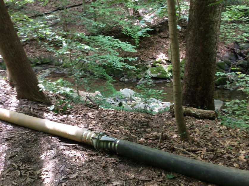 The bypass hose overlooked the creek. (July 15th photo by David Jonas Bardin)