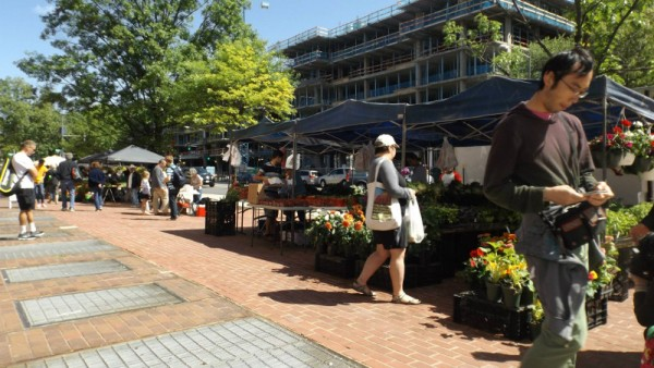The UDC farmers market last weekend. (photo by Leslie Malone,  marketing and communications manager, UDC College of Agriculture, Urban Sustainability & Environmental Sciences)