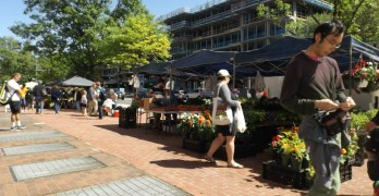 Van Ness farmers market reopens Saturday, May 20 with 'Music and More'