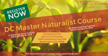 "Become a ""Master Naturalist"" through UDC"