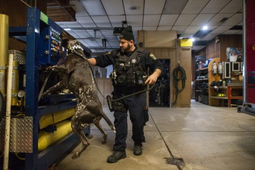 Officer Dan Miller works with Forest Park police canine Madison, who assists the department in narcotics detection. | Alex Rogals, Staff Photographer