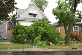 The porch at 1300 Elgin was completely covered by tree branches after a storm on Aug. 10. | Photo by Jill Wagner