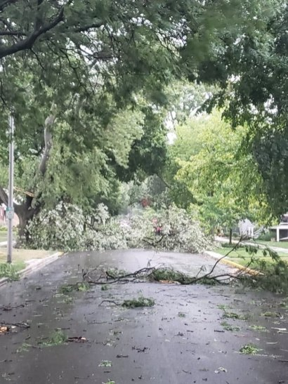 A storm on Aug. 10 caused damage throughout town, including the 1400 block of Elgin, pictured here. | Photo by Jill Wagner