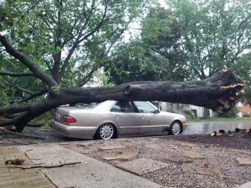 A storm on Aug. 10 caused damage throughout town. | Photo by Jill Wagner