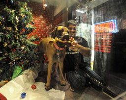Richard Schauer, of Schauer's Hardware, and his dog Sidney inside their store window during the Holiday Walk. Their theme was to help feed people and they were donating 10% of their sales to the food pantry. (Jennifer Wolfe/Contributor)