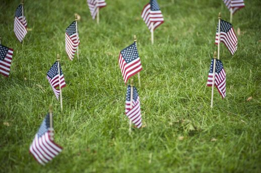 American flags commemorated fallen soldiers at Vet Fest last Saturday. | William Camargo/Staff Photographer