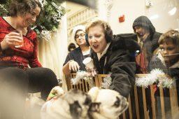Nancy Greco enjoys petting pugs in a window display at Deedee & Edee. | William Camargo/Staff Photographer