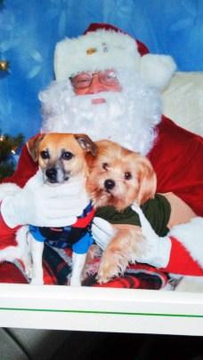 Oddie and B.J. with Santa. | Courtesy Tami Bennett