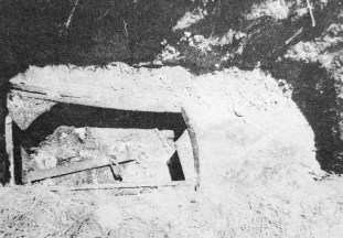 A closeup of Todd's grave reveals an empty casket and missing casket cover. | Photo courtesy Forest Park Historical Society
