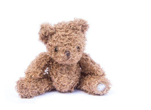 Build a Stuffed Animal Storytime