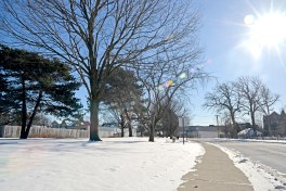 The area of land where condos will soon be built. | Alexa Rogals/Staff Photographer