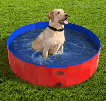 Kopeks Foldable Outdoor Pet Pool
