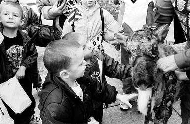 1998 Annual Holiday Walk featured reindeer, which was a special thrill for many children.