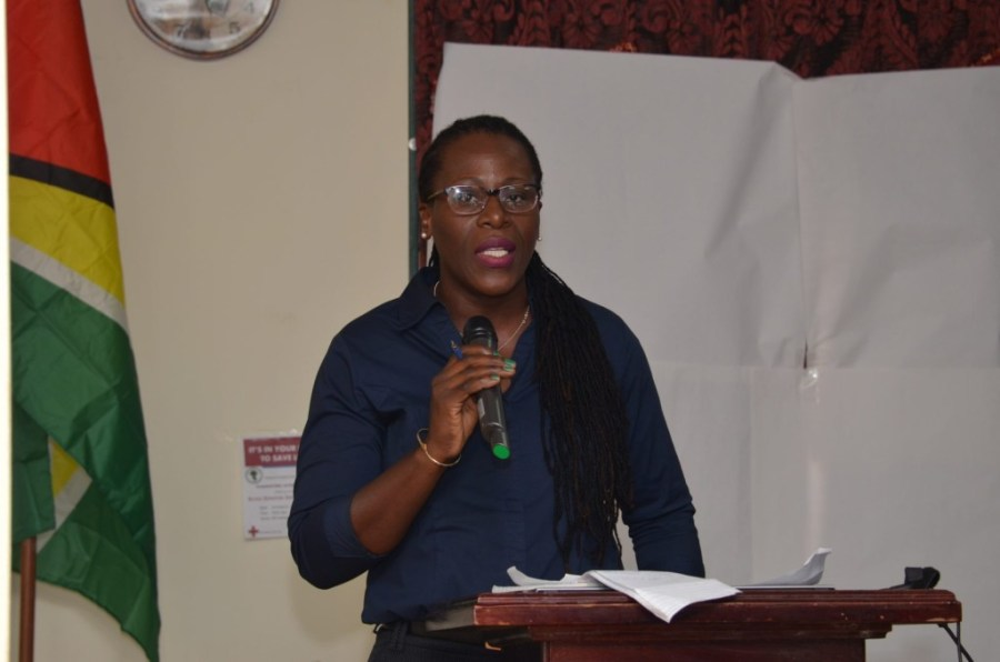 Head of the Department of Environment (DOE), Ndibi Schwiers