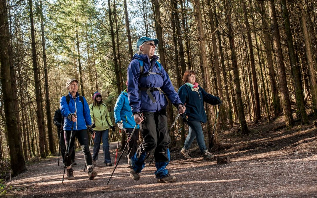 Invitation to Quote – Forestry Commission's Education Offer