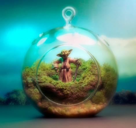Yoda Terrarium - Hanging Moss Zen Garden