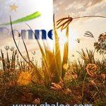Bonne année 2019 avec l'aloe vera – www.ghaloe.com