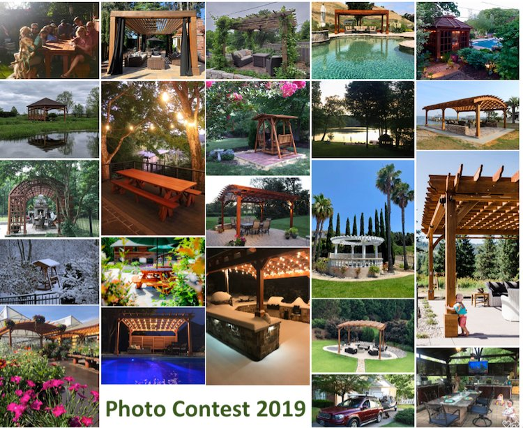 The People have spoken—announcing the winners of our 2019 Photo Contest!