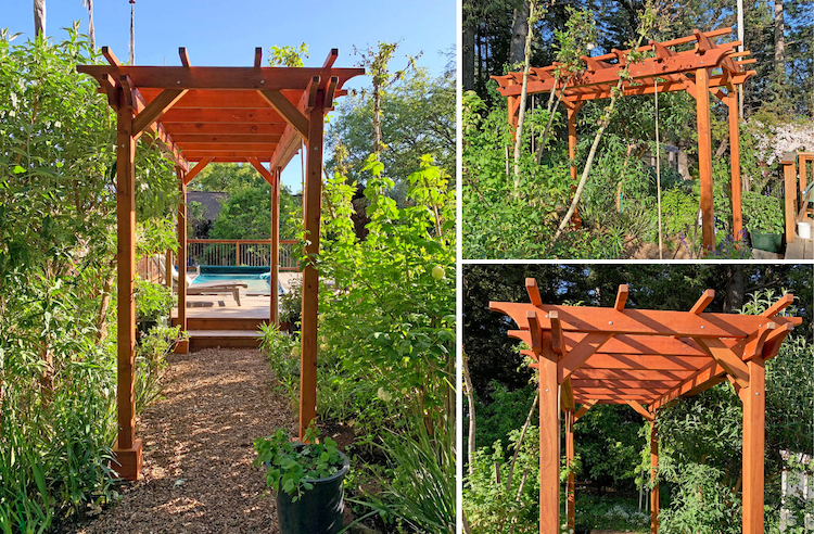 Small Garden Pergola Kit