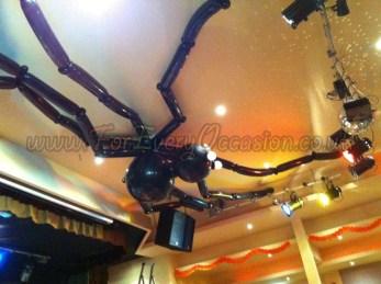 Roof Spider