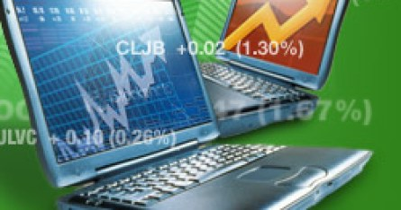 Forex trading cutting loses short