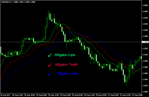 The alligator indicator in forex trading