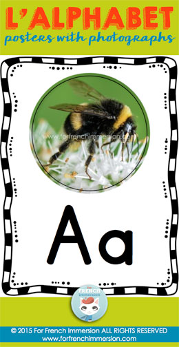 French Alphabet Posters - illustrated with photographs. With or without primary writing lines. Great reference tool for your French classroom!