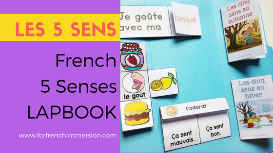 French Five Senses Lapbook: a hands-on, interactive activity to recap and consolidate knowledge about the five senses. Les cinq sens: l'odorat, la vue, l'ouïe, le toucher et le goût.