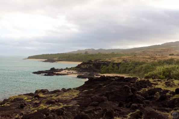 Rodrigues Cote Sur