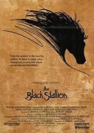 220px-Black_stallion_poster