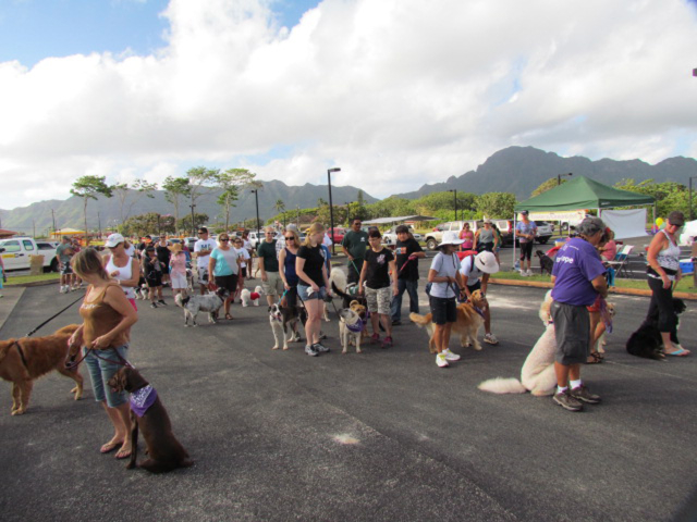 Walkers in Bark for Life