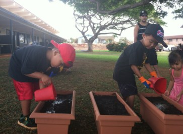 Ele`ele Kindergarten students tend the soil and prepare for planting.