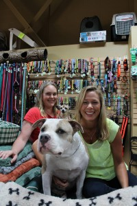 It's one big, happy, furry family at Natural Pet Hawaii—Jenny Pimsaguan with her Pit Bull, Magic and staff member, Ally Kirk with Pumpkin.