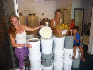 Nani Moon Mead president and owner Stephanie Krieger displays some of the local ingredients used at the Kapa`a meadery —a box of fresh lilikoi and 77 gallons of honey delivered on National Mead Day. Stephanie is joined by her son, Hunter Krieger, 5, and hive investor Katherine Muzik. Photo by Viviane Gilbert Stein
