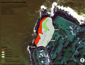 An infested area in Kalihiwai, on Kaua'i's North Shore, is seen here on a proposed experimental eradication draft document from August 2012.