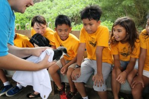 Students from 'Ele'ele Elementary School on Kaua'i learned about Kaua'i's native seabirds, Newell's Shearwaters and participated in a Hawaiian cultural ceremony to release the young birds into the wild.